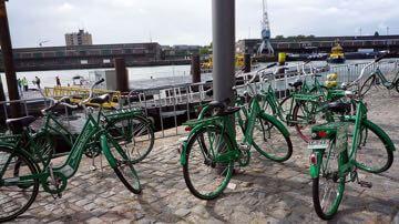 Groene fietsen 1280.jpg
